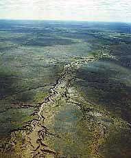 Darling Basin